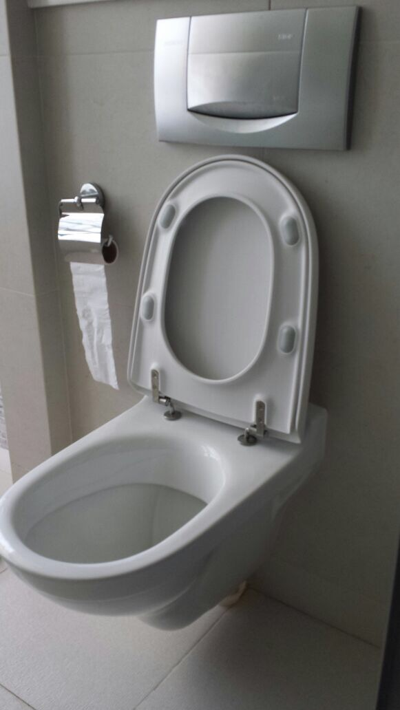 Reliable Plumber Wall Mounted Toilet Bowl