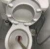 Reliable Plumber Reliable Plumbing Clearing Of Toilet Bowl Choke